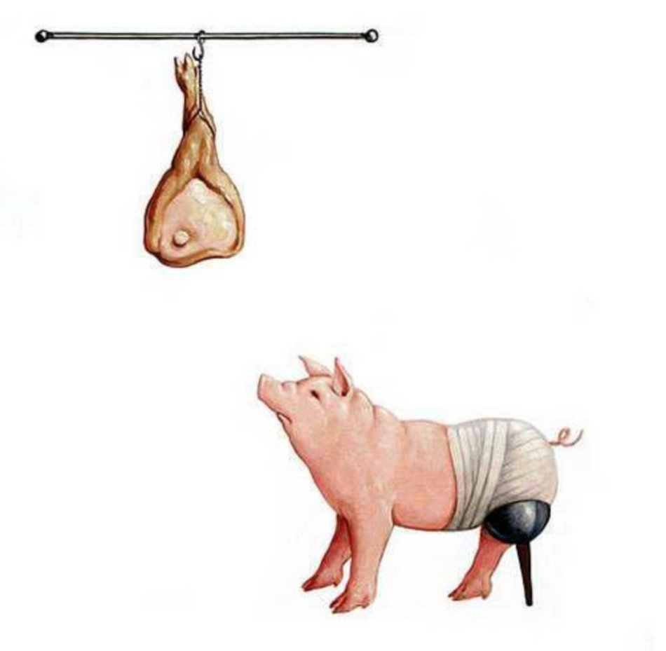 Drawing: Side view of pink pig looking up towards a rod, on which a processed pig leg is hanging with a hook in the hoove (like a ham in a butcher shop). Instead of his left hind leg, the pig has an old-style prosthetic leg (black cup attached to body, brown stick as leg, and has white bandages around his back body, with his curly tail sticking out.