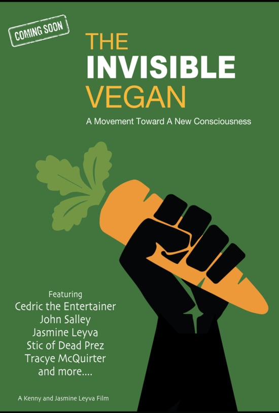 Poster with announcement of The Invisible Vegan