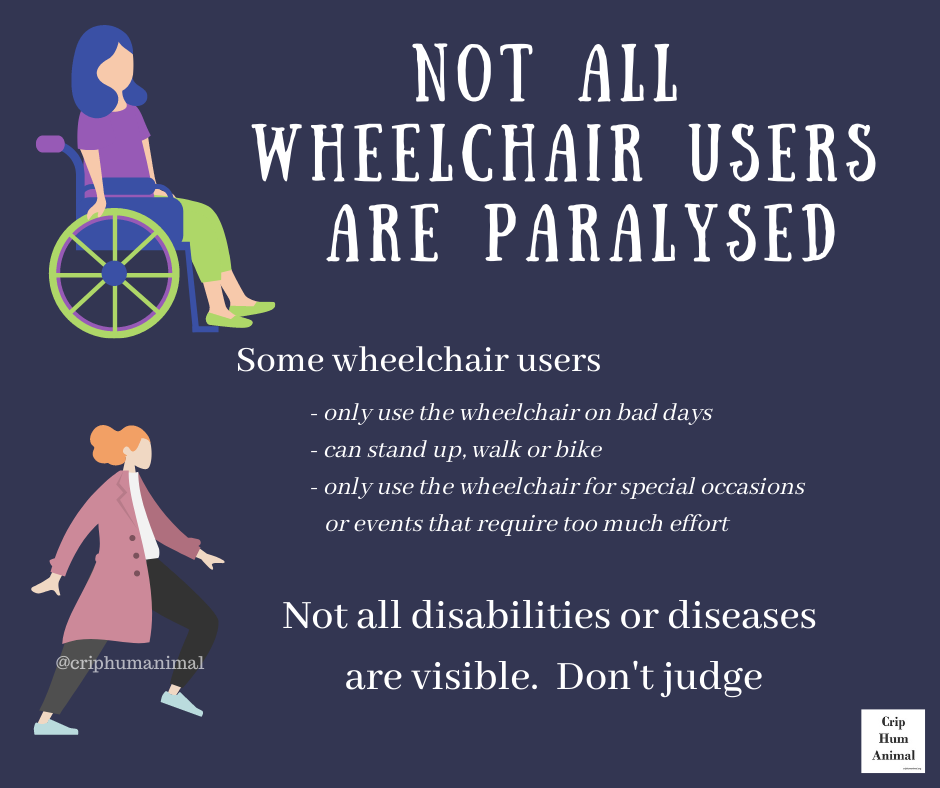 Mauve background.  Image/drawing of person in wheelchair on left top.  Image/drawing of person walking on left bottom.   text: 'NOT ALL WHEELCHAIR USERS ARE PARALYSED Some wheelchair users -only use the wheelchair on bad days -can stand up, walk or bike only use the wheelchair for special occassions or events that require too much effort @criphumanimal Not all disabilities or diseases are visible. Don't judge Crip Hum Animal'